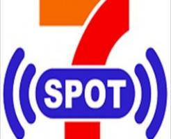 7spot-logo-design