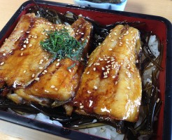 takechan-sushi-kabayaki-don-of-hokke-fish